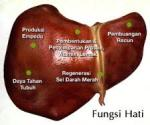 Obat untuk Infeksi di Hati (Penyakit Liver)